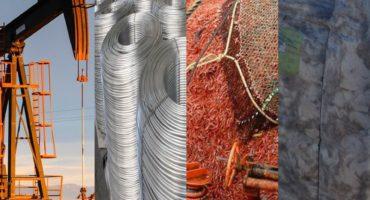 Chubut afronta un desafío económico y productivo: cómo lograr diversificación con valor agregado