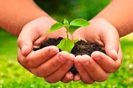 El INTA mostró los resultados económicos de la agroecología