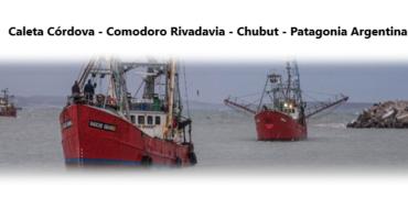 Caleta Córdova: En busca de recuperar dinamismo pesquero